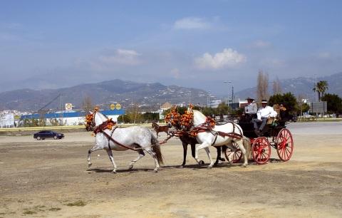 cuestión de caballos